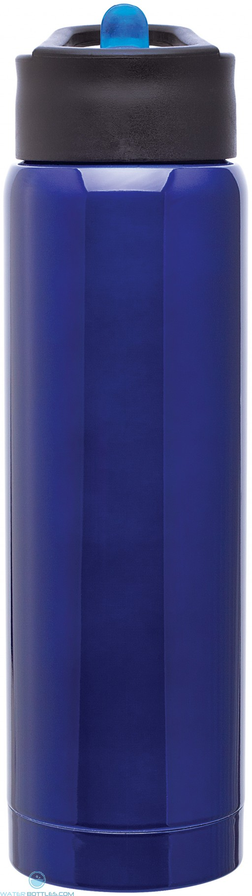 H2Go Arctic Stainless Steel Tumblers | 17 oz - Blue