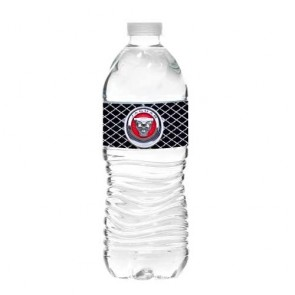 16 oz Bottled Water - Wave