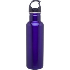 Purple H2Go Stainless Steel Bolt | 24 oz