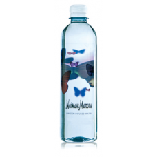 Custom Bullet Bottled Water | 16.9 fl oz